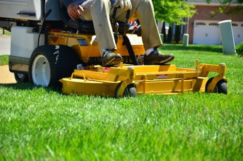 Grass Cutting Services: Pricing Information & Advice